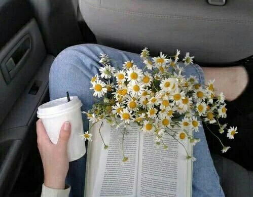 alternative, book, coffee, flowers, hipster, indie, tea, vintage