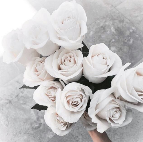 White Roses Cool Chic Style Fashion By ♡ We Heart It Image 4301392 By Misdam On Favim Com