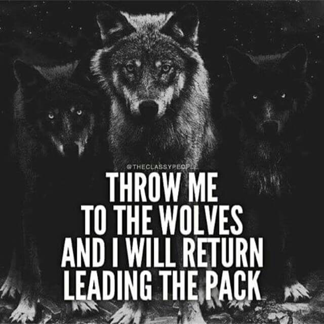 don t throw me to the wolves You want to come in my life, the door is open you want to get ou.