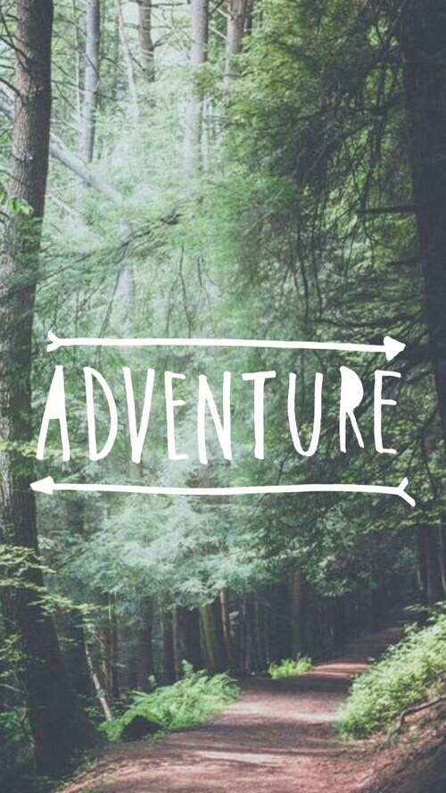 Adventure Cute Forest Wallpaper Image 4805667 By
